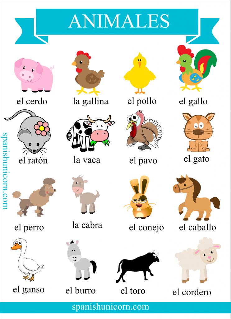 Vocabulario de animales domésticos en español con imagenes