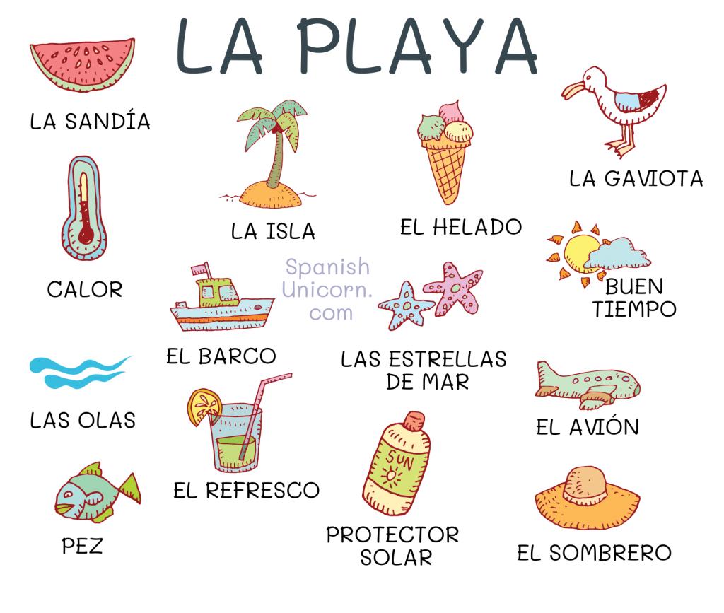 Diálogo y actividades para practicar el vocabulario
